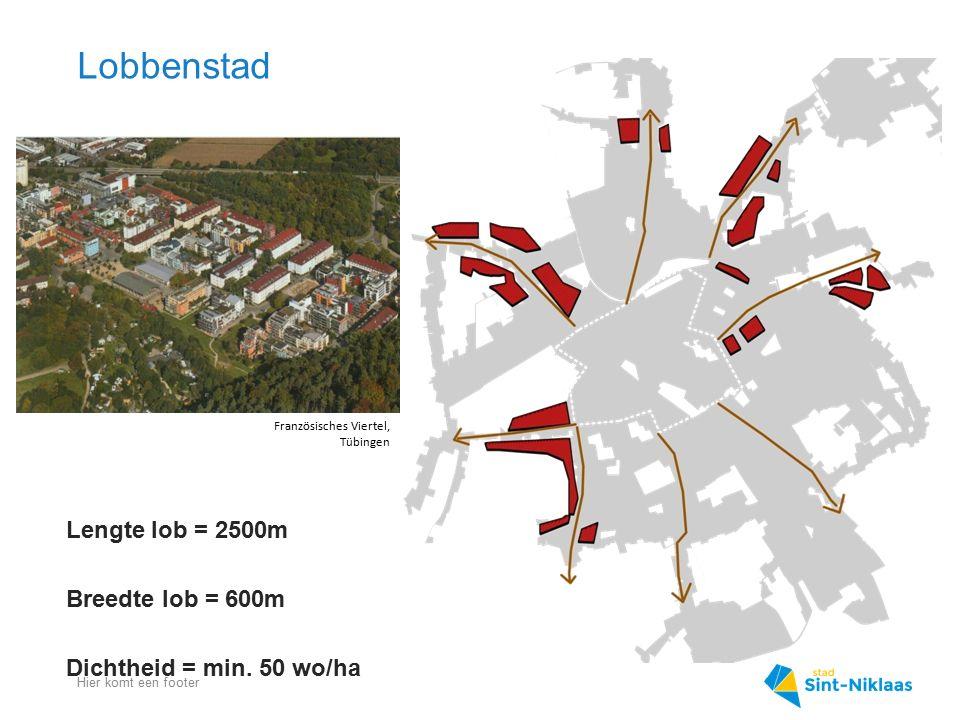 Lobbenstad Lengte lob = 2500m Breedte lob = 600m
