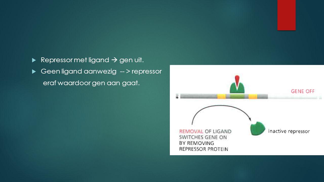 Repressor met ligand  gen uit.