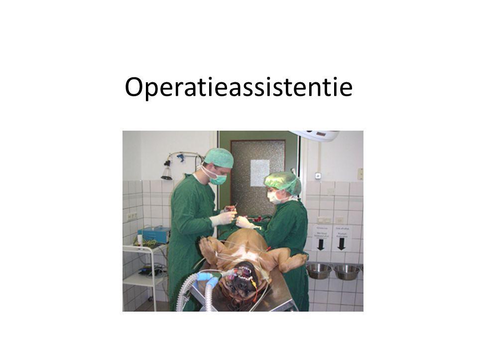 Operatieassistentie