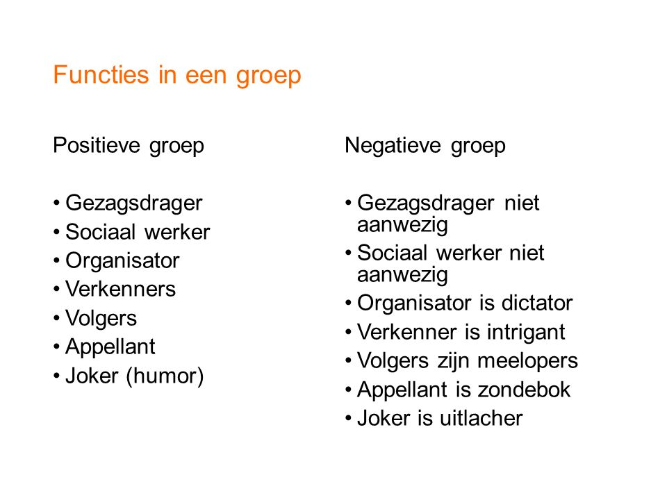 Functies in een groep Positieve groep Gezagsdrager Sociaal werker