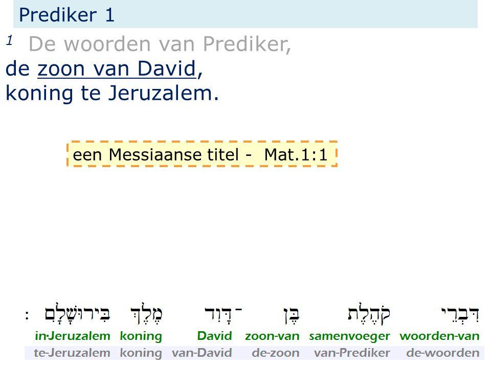 1 De woorden van Prediker, de zoon van David, koning te Jeruzalem.