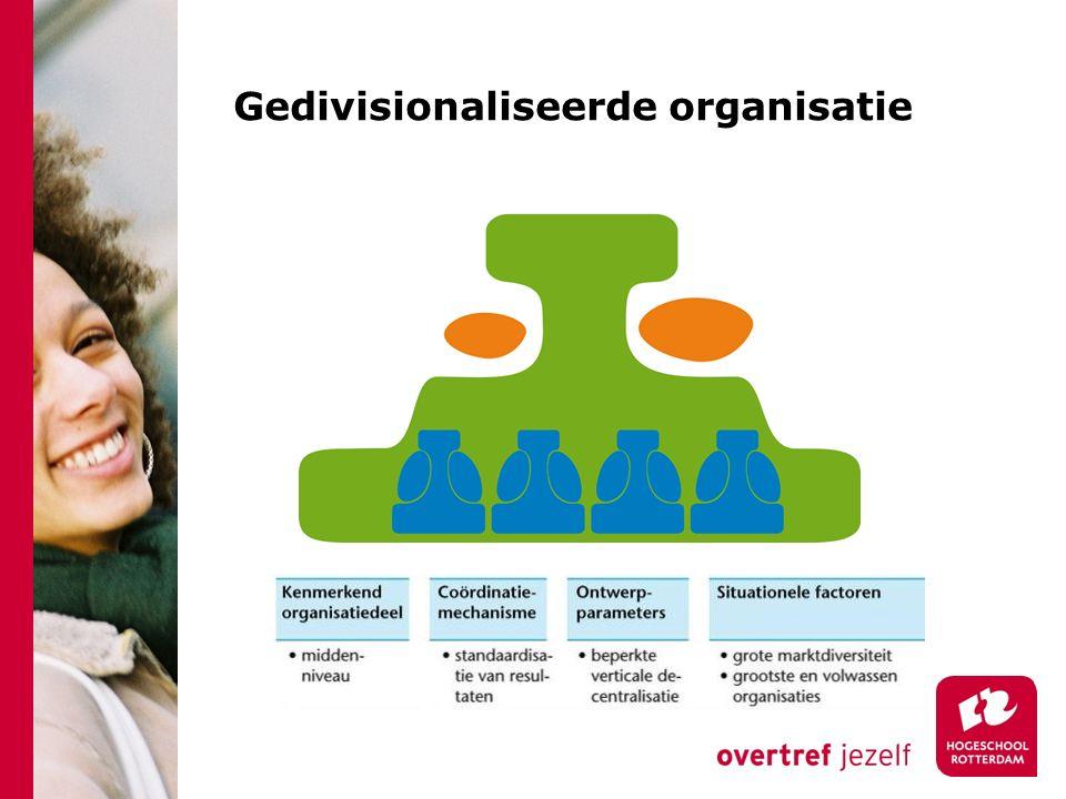 Gedivisionaliseerde organisatie