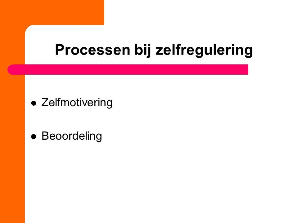 Processen bij zelfregulering