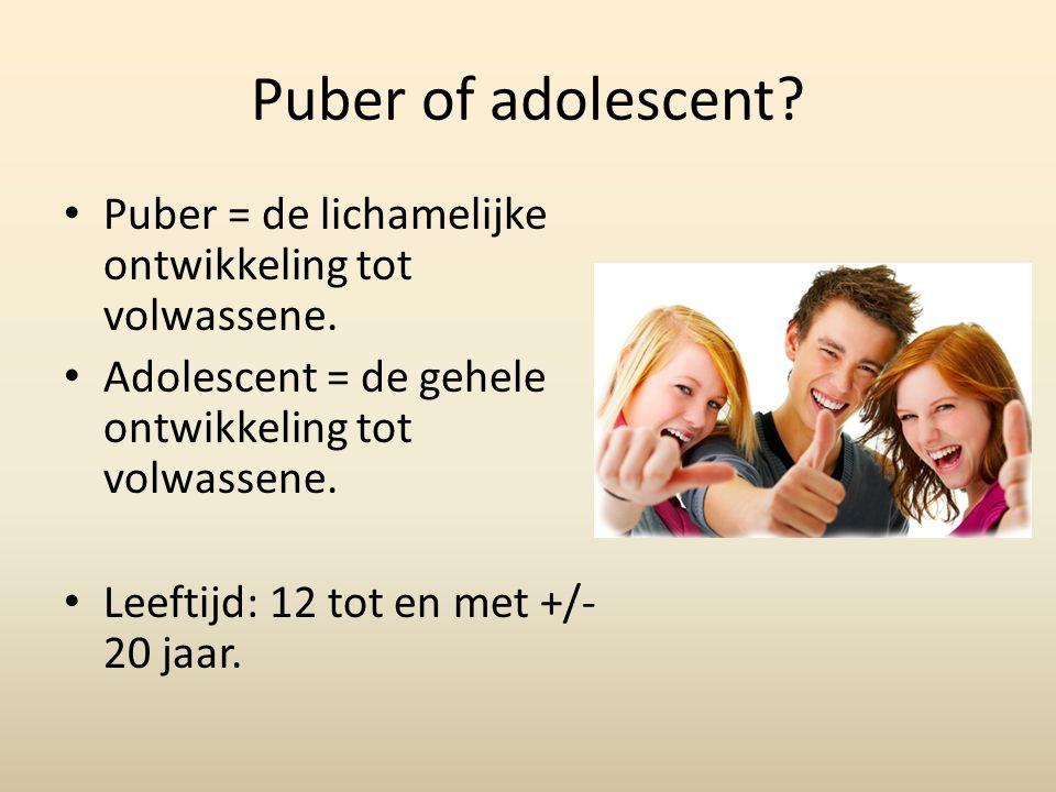 Puber of adolescent Puber = de lichamelijke ontwikkeling tot volwassene. Adolescent = de gehele ontwikkeling tot volwassene.