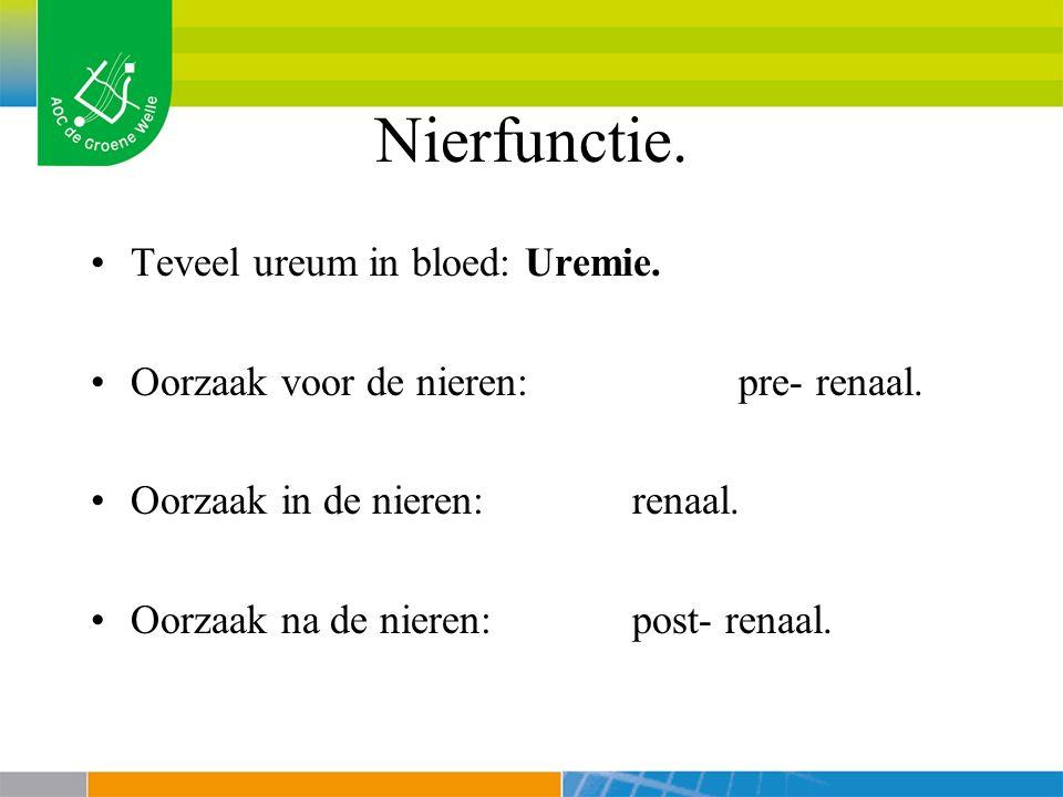 Nierfunctie. Teveel ureum in bloed: Uremie.