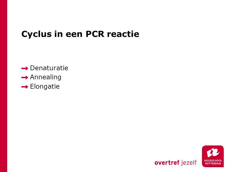 Cyclus in een PCR reactie