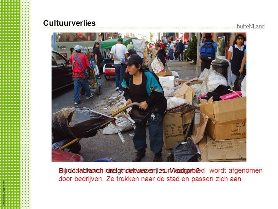 Cultuurverlies Hun taal wordt niet onderwezen, hun leefgebied wordt afgenomen door bedrijven. Ze trekken naar de stad en passen zich aan.