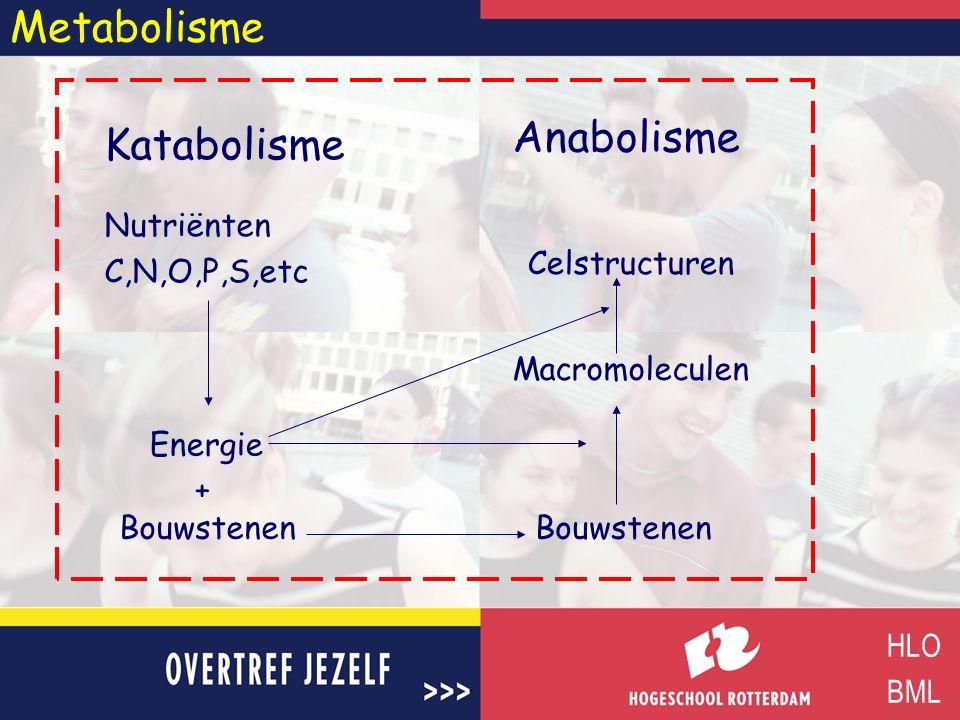 Metabolisme Anabolisme Katabolisme Nutriënten C,N,O,P,S,etc