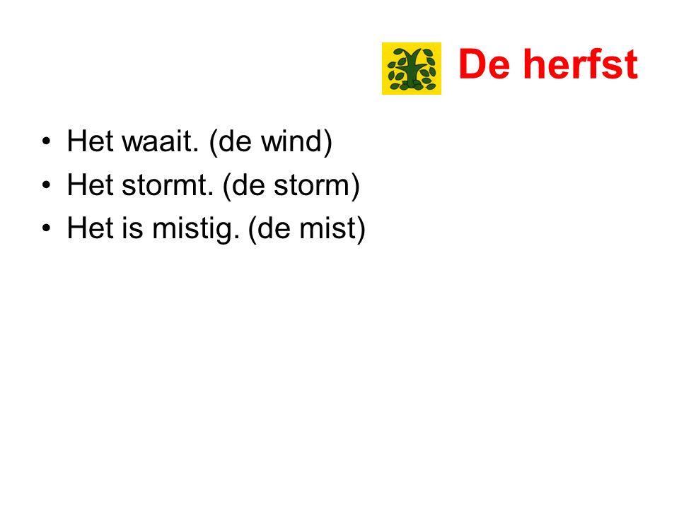 De herfst Het waait. (de wind) Het stormt. (de storm)