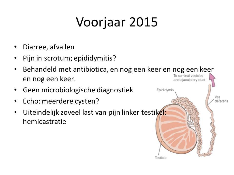 Voorjaar 2015 Diarree, afvallen Pijn in scrotum; epididymitis
