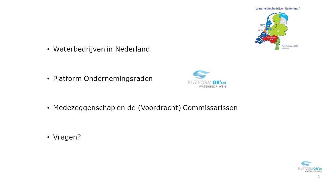 Waterbedrijven in Nederland