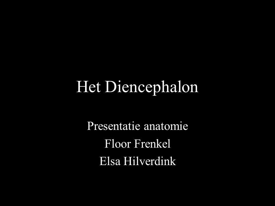 Presentatie anatomie Floor Frenkel Elsa Hilverdink