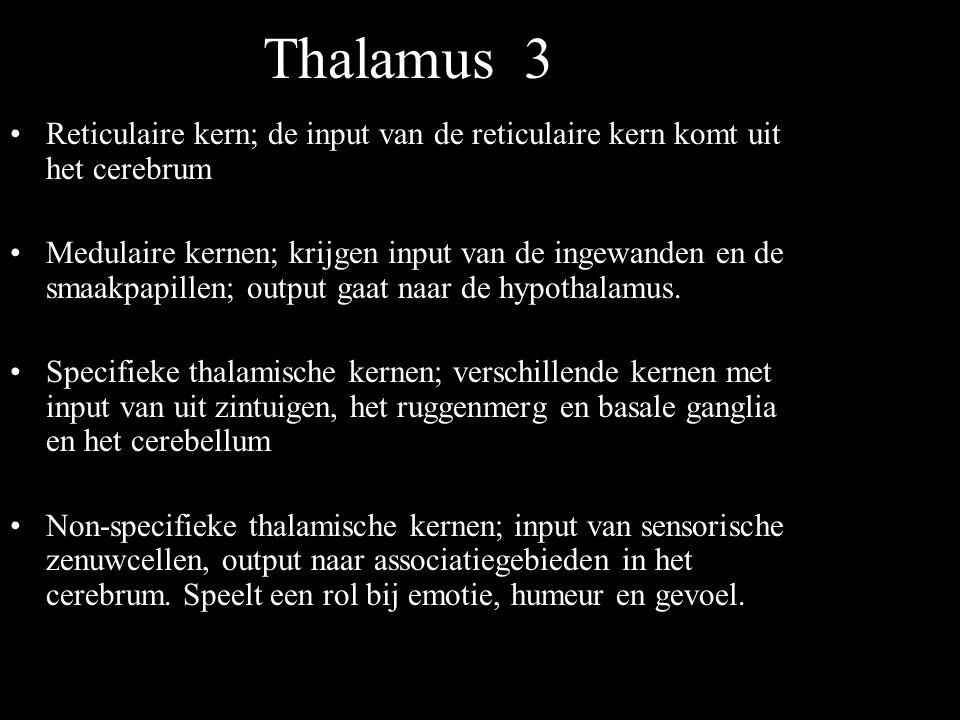 Thalamus 3 Reticulaire kern; de input van de reticulaire kern komt uit het cerebrum.