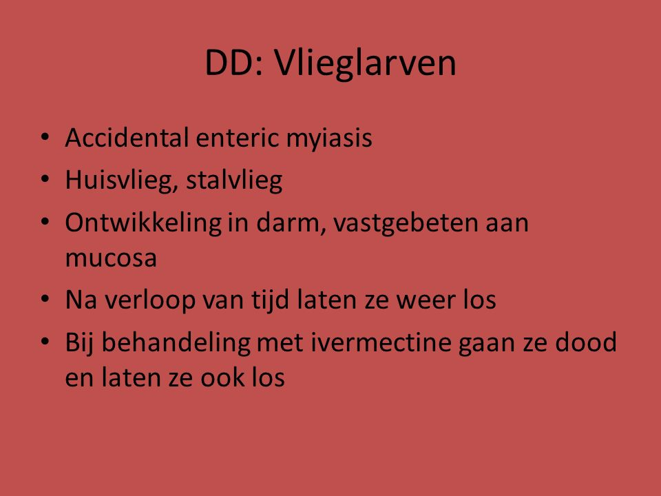 DD: Vlieglarven Accidental enteric myiasis Huisvlieg, stalvlieg