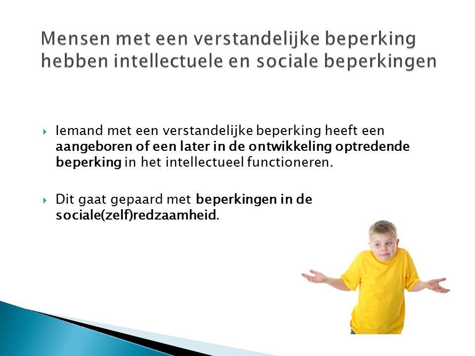 Mensen met een verstandelijke beperking hebben intellectuele en sociale beperkingen
