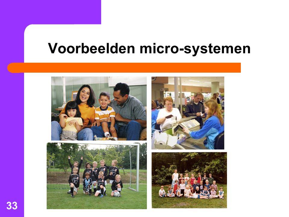 Voorbeelden micro-systemen