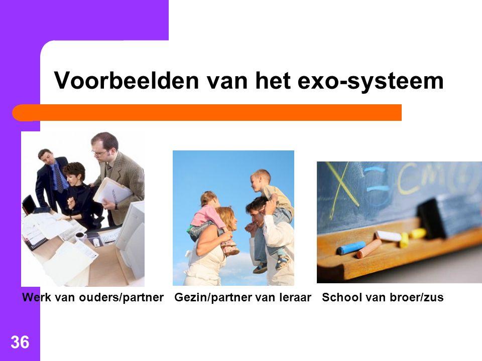 Voorbeelden van het exo-systeem