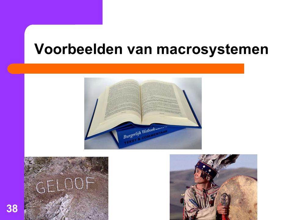 Voorbeelden van macrosystemen