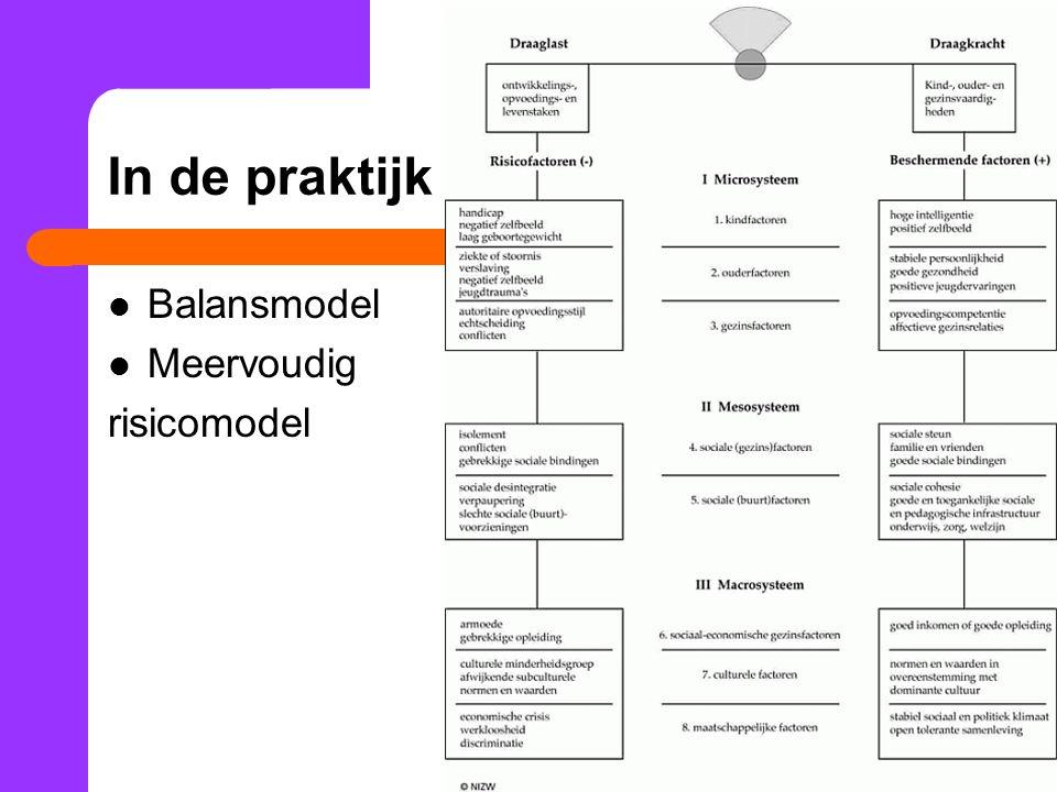 In de praktijk Balansmodel Meervoudig risicomodel