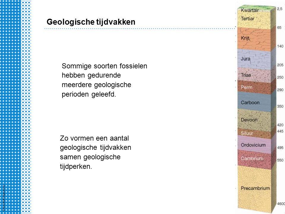 Geologische tijdvakken