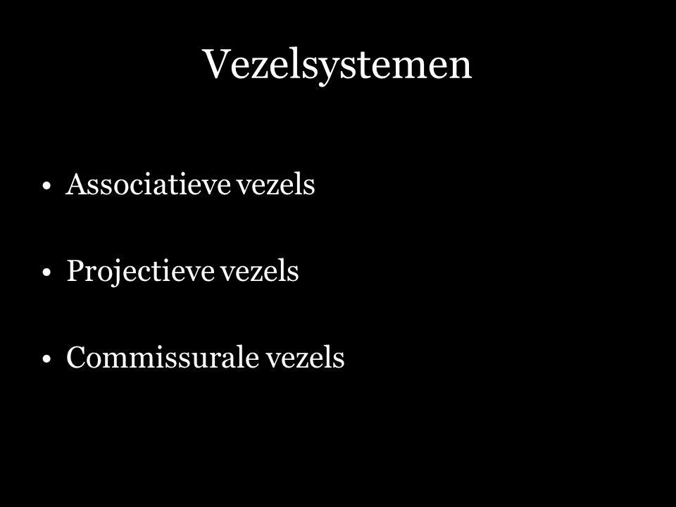Vezelsystemen Associatieve vezels Projectieve vezels