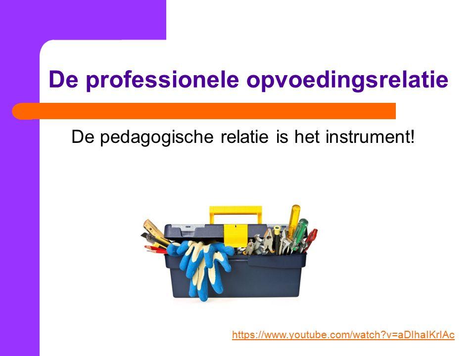 De professionele opvoedingsrelatie