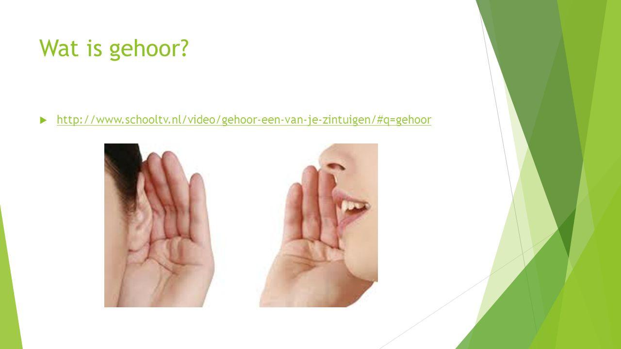 Wat is gehoor http://www.schooltv.nl/video/gehoor-een-van-je-zintuigen/#q=gehoor