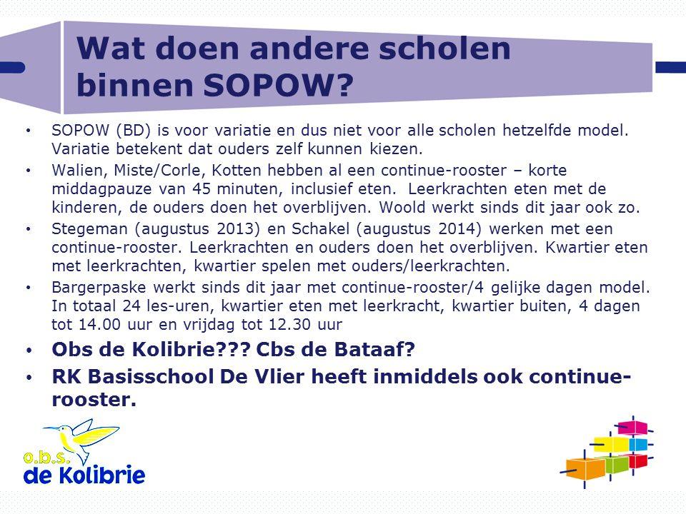 Wat doen andere scholen binnen SOPOW
