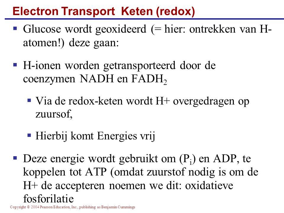 Electron Transport Keten (redox)