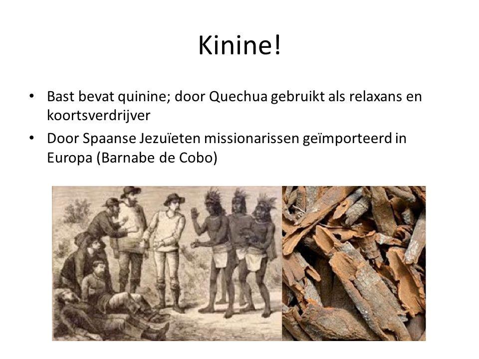 Kinine! Bast bevat quinine; door Quechua gebruikt als relaxans en koortsverdrijver.