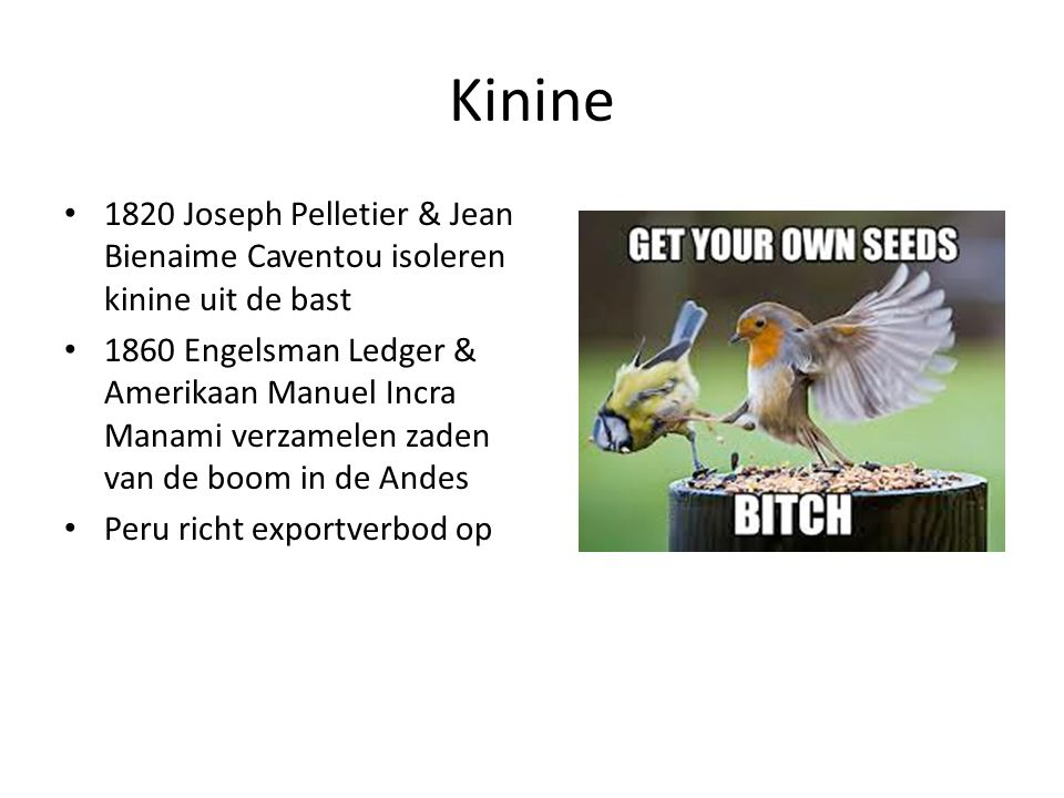 Kinine 1820 Joseph Pelletier & Jean Bienaime Caventou isoleren kinine uit de bast.