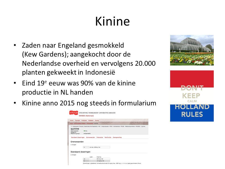 Kinine Zaden naar Engeland gesmokkeld (Kew Gardens); aangekocht door de Nederlandse overheid en vervolgens 20.000 planten gekweekt in Indonesië.