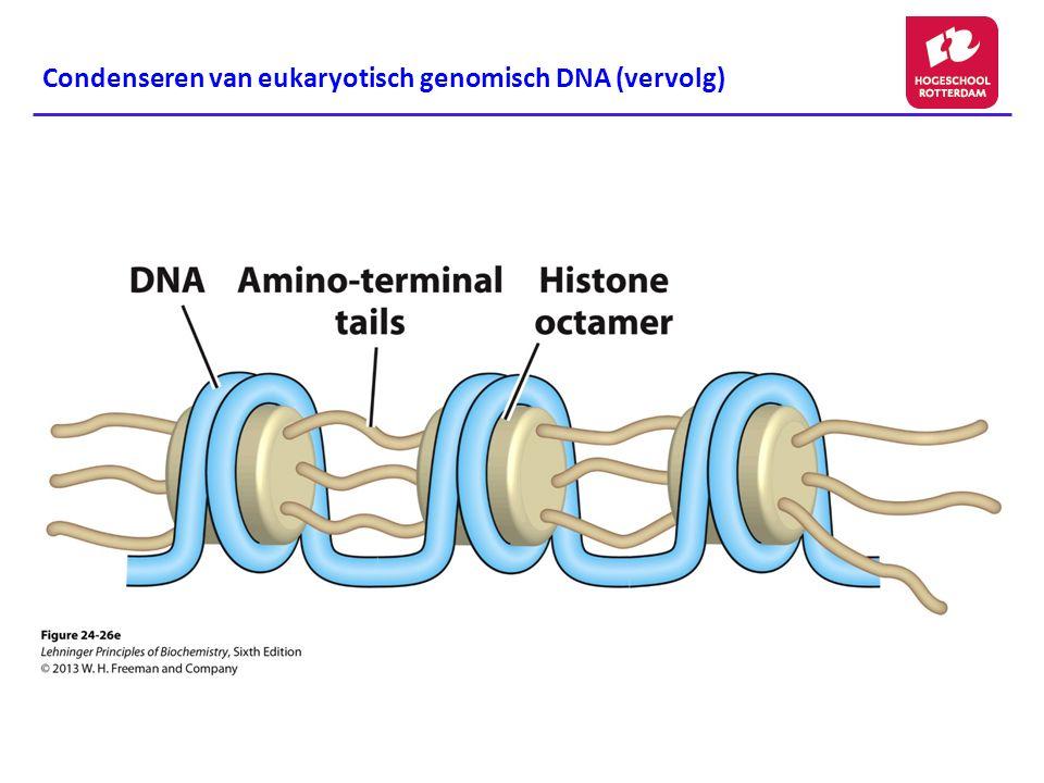 Condenseren van eukaryotisch genomisch DNA (vervolg)
