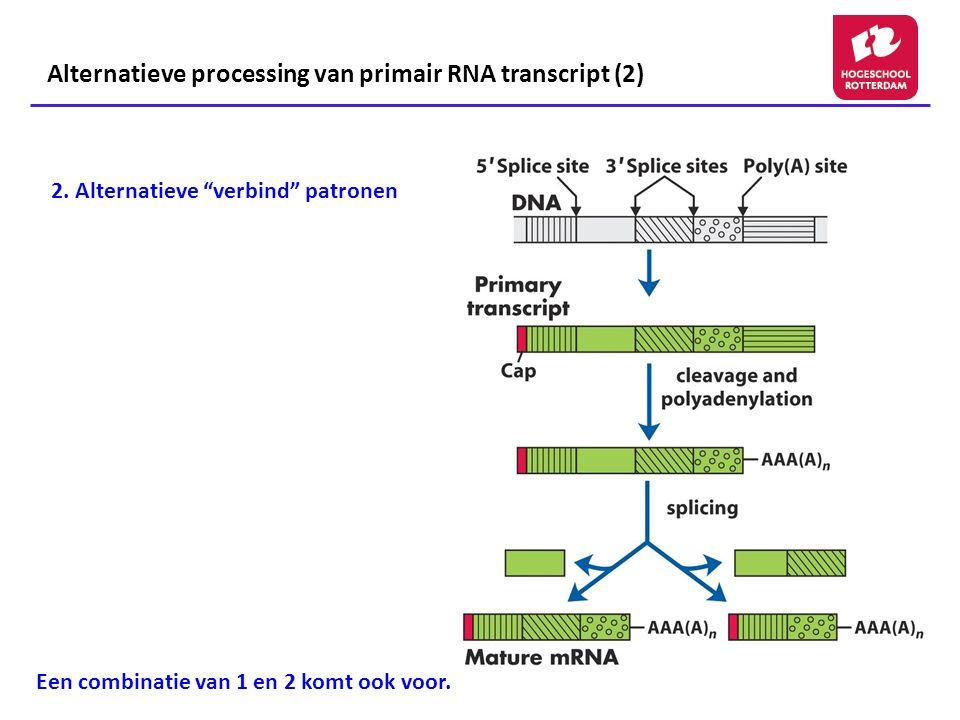 Alternatieve processing van primair RNA transcript (2)