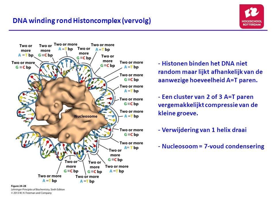 DNA winding rond Histoncomplex (vervolg)