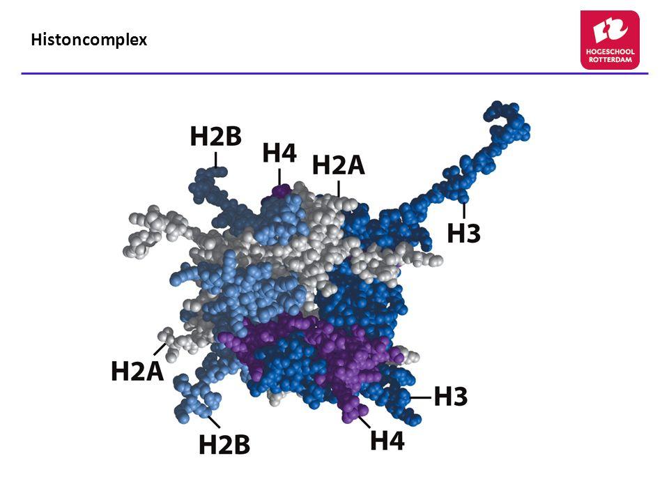 Histoncomplex