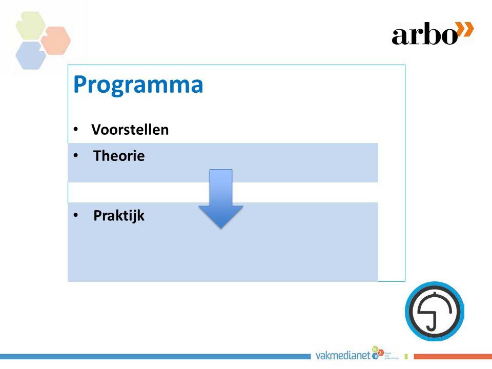 Programma Voorstellen Rie middel of doel