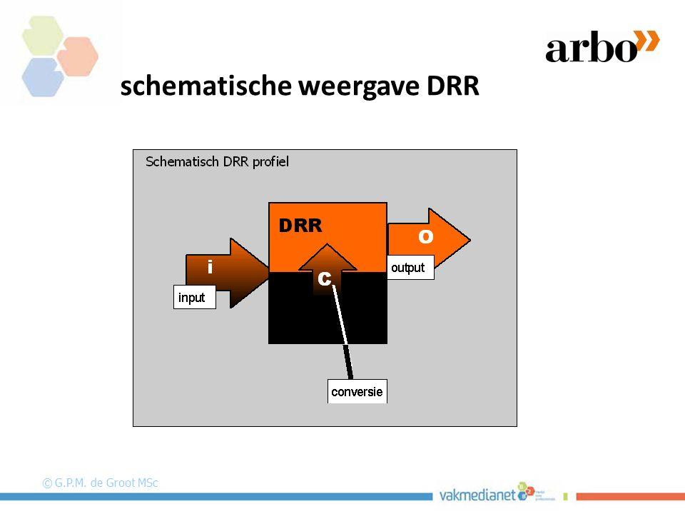 schematische weergave DRR