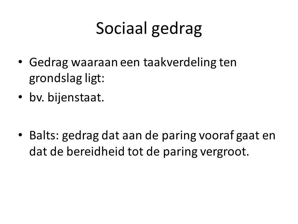 Sociaal gedrag Gedrag waaraan een taakverdeling ten grondslag ligt: