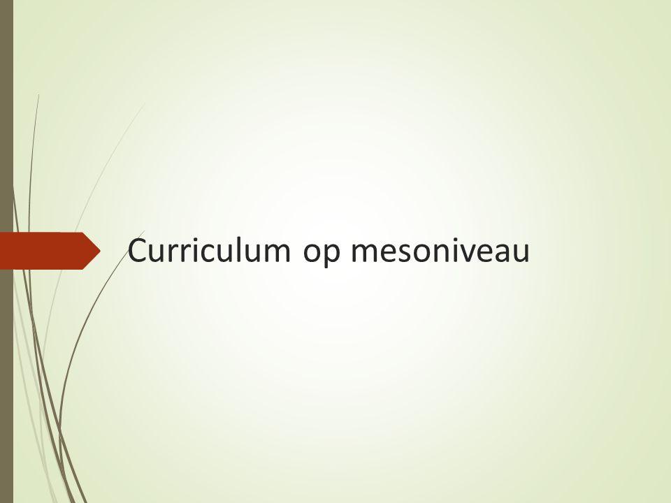 Curriculum op mesoniveau