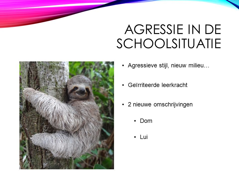 Agressie in de schoolsituatie