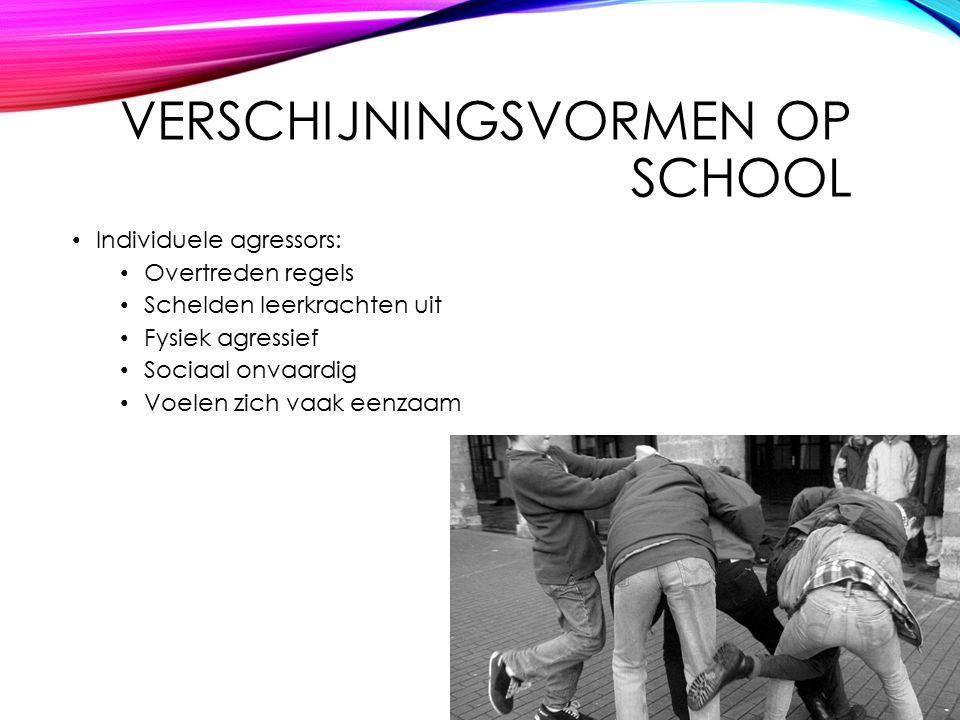 Verschijningsvormen op school