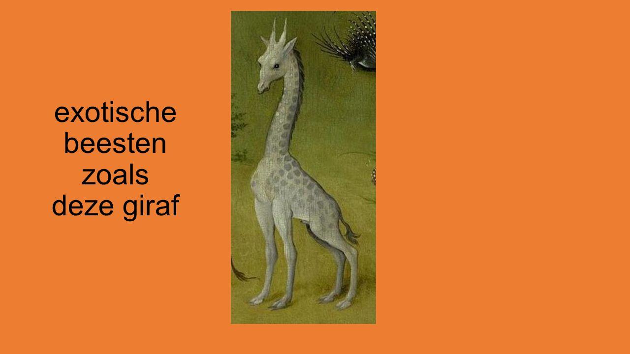 exotische beesten zoals deze giraf