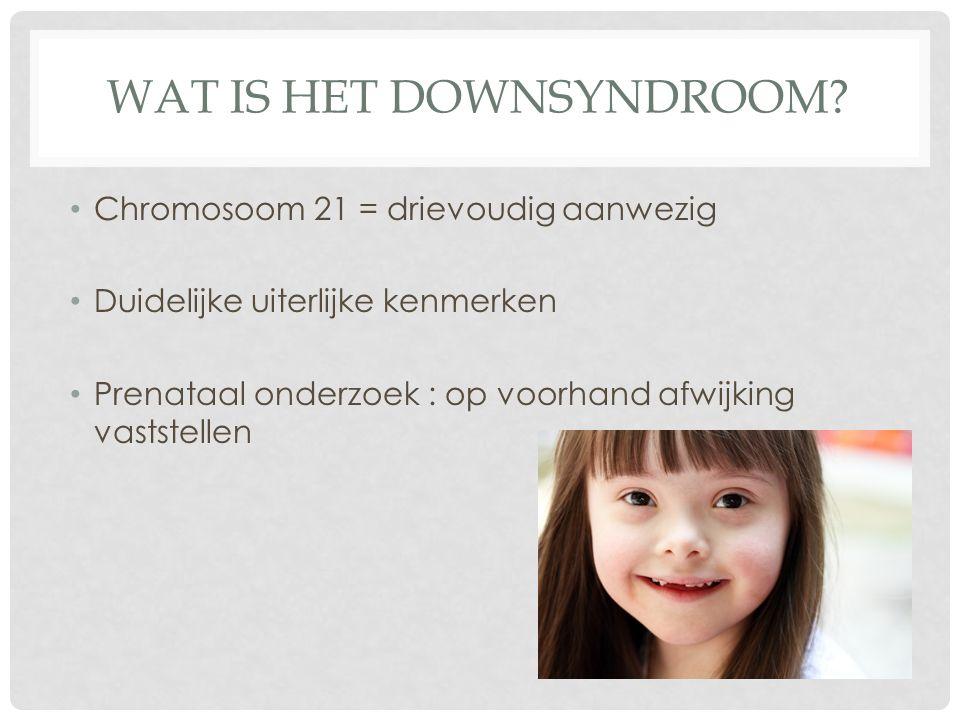 Wat is het downsyndroom