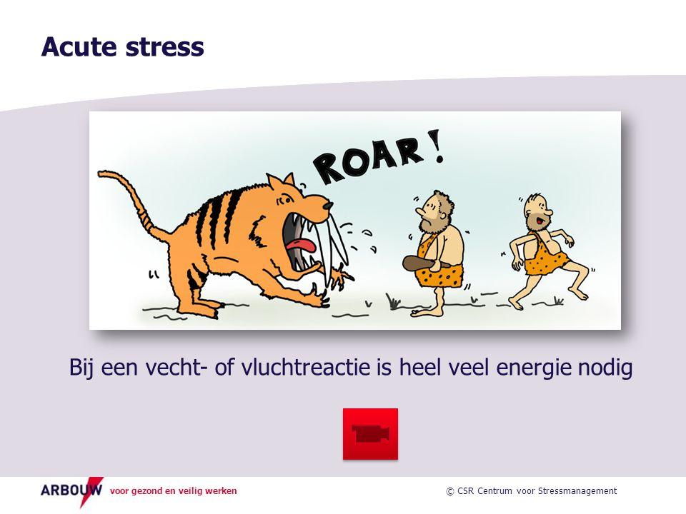 Acute stress Bij een vecht- of vluchtreactie is heel veel energie nodig.