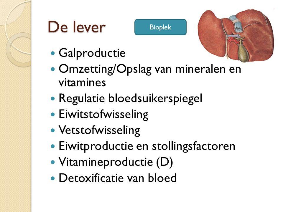 De lever Galproductie Omzetting/Opslag van mineralen en vitamines