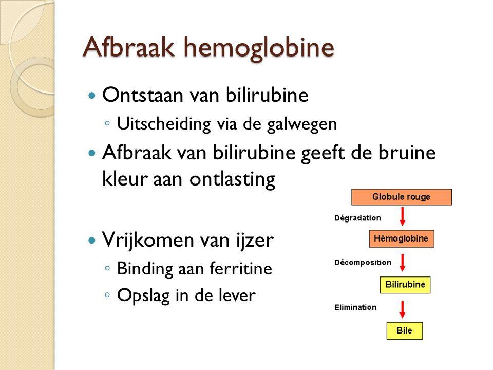 Afbraak hemoglobine Ontstaan van bilirubine
