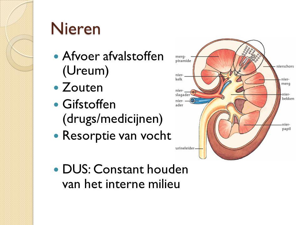 Nieren Afvoer afvalstoffen (Ureum) Zouten