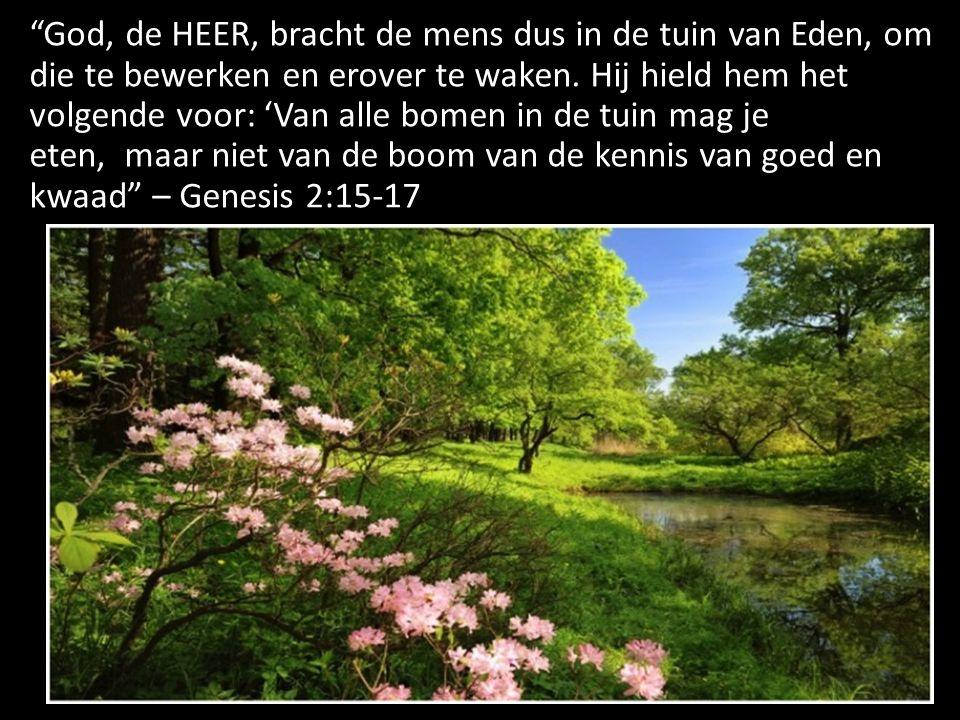 God, de HEER, bracht de mens dus in de tuin van Eden, om die te bewerken en erover te waken. Hij hield hem het volgende voor: 'Van alle bomen in de tuin mag je eten, maar niet van de boom van de kennis van goed en kwaad – Genesis 2:15-17