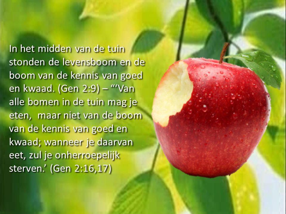 In het midden van de tuin stonden de levensboom en de boom van de kennis van goed en kwaad.